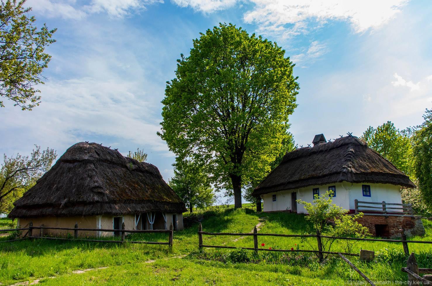 Гулять среди мельниц и украинских хат в Пирогово.