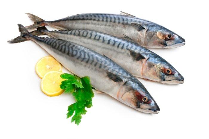 pescados-y-mariscos-10-e1477557953510